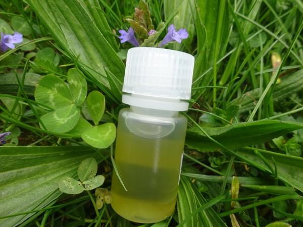 Tulsi, Ocinum sanctum Öl, 30ml, leider aus