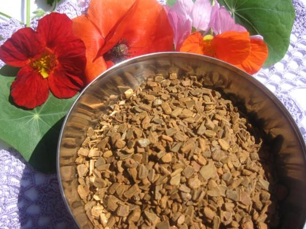 Zimtrinde, Cinnamomum ceylanicum
