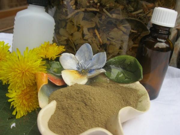 Brahmi, Bacopa monnieri, Feenkraut, Hydroglycerin, 10ml