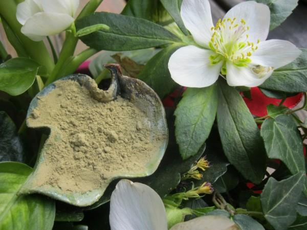 Grüner Tee, gemahlen, Bio