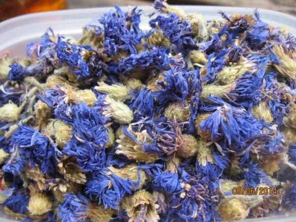 Kornblumenblüten, 1A-Qualität, Bio, ganz