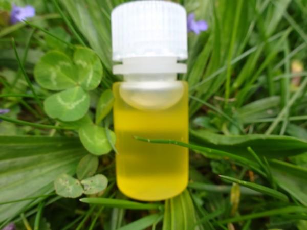 Veilchenöl, Mazerat - 30ml, leider aus