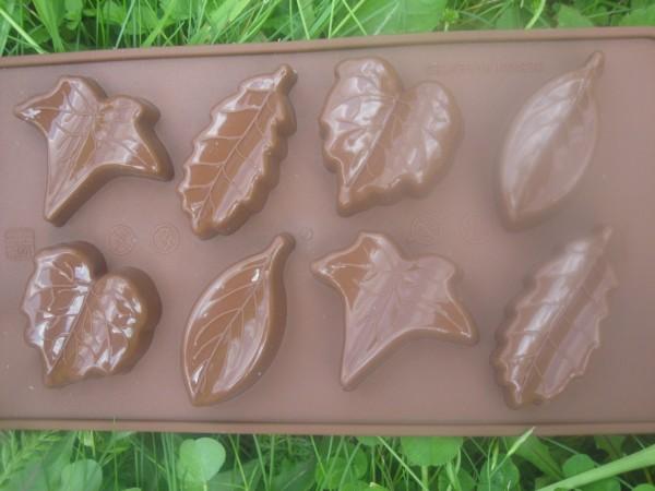Minisilikonformen, Blätter