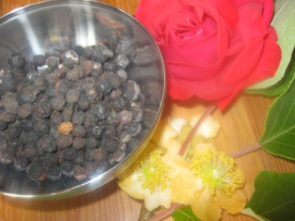 Schlehenbeeren ganz, Prunus spinosa, Bio, 50g